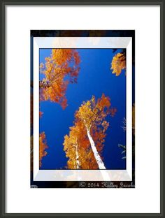 Dutch-herfst Framed Print By Holley Jacobs