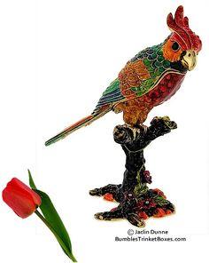 Trinket Box: Multi-Colored Parrot