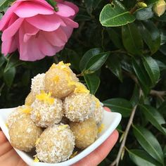and a little sweet treat! Who doesn't love sweet treats that taste amazing, but are guilt free! All the recipes. Bliss Balls, Vegan Sweets, Guilt Free, Healthy Snacks, Sweet Treats, Fruit, Recipes, Food, Health Snacks