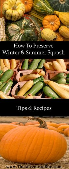 How to Can Squash: Winter and Summer great homemade cellar idea and canning.