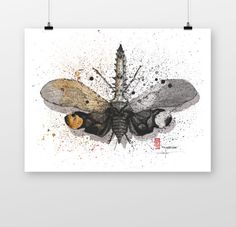 That happens when you combine the late coffee and your interests in Entomology. Fulgoridae - they are mostly of moderate to large size, many with a superficial resemblance to Lepidoptera due to their brilliant and varied coloration. Coffee Wine, Night Time, Moth, Moose Art, Birds, Ink, Drawings, Handmade Gifts, Animals