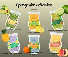 Scentsy Spring Brick Collection 6 Spring and Summer Fragrance that will make your home smell delicious.