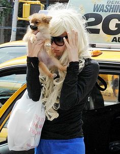 Amanda Bynes' Dog Soaked in Gasoline, Burned After Driveway Fire: Report  Read more: http://www.usmagazine.com/celebrity-news/news/amanda-bynes-dog-soaked-in-gasoline-burned-after-driveway-fire-report-2013247#ixzz2a04LUdpy  Follow us: @Us Weekly on Twitter | usweekly on Facebook