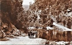 Home - Southpole Nordic Walking George South Africa, Knysna, Nordic Walking, Back In The Day, Vintage Photography, Fun Workouts, Wilderness, Cape, Beautiful Places