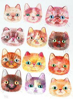 con cara de gato, ilustración de Kristina McLean