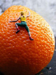 The orange climber