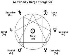 Actividad y Carga Energética