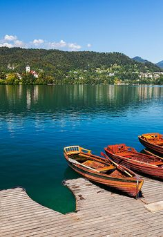 Lake Bled, Slovenia I think of growing up and spending the entire day outside with wicker baskets of food and gathering fresh berries. Oh, what charm....