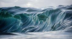 Инстаграм дня: Океанские волны Уоррена Килана - Bird In Flight