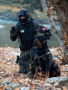 Military rottweiler