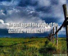 He shall regard the prayer of the destitute, and shall not despise their prayer. Psalm 102:17