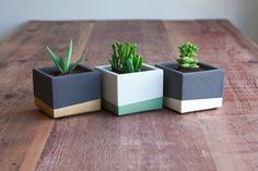 Color Block Concrete Planter Set by NystromGoods