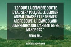 « Lorsque la dernière goutte d'eau sera polluée, le dernier animal chassé et le dernier arbre coupé, l'homme blanc comprendra que l'argent ne se mange pas. » Sitting Bull