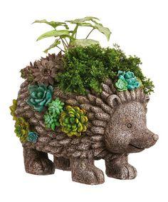 Succulent Garden Hedgehog Planter