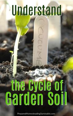 Gardening Compost Do you struggle with growing terrific vegetables in your garden? You may if you don't have a feel for the cycle of garden soil.