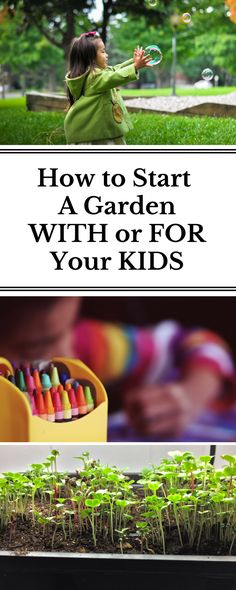 Step-by-step plans for how to start a garden with young kids, including the best seeds for little hands and the fastest growing plants to keep their interest.