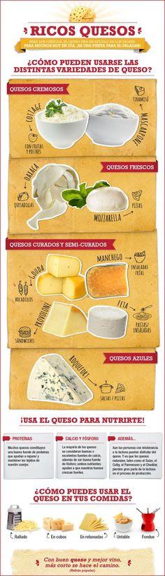 El queso provolone es ideal para un sándwich, y el roquefort para las salsas.