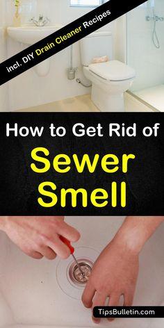 13 best sewer smell in basement images diy ideas for home rh pinterest com