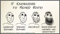 IT Knowledge To Beard Ratio