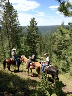 On The Trial In The Black Hills Of South Dakota! Ralph And Barbara Thomas of- Tribal Impressions - http://www.indianvillagemall.com