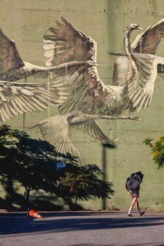 Street Art - New Mural - Los Angeles, California Murals Street Art, 3d Street Art, Amazing Street Art, Street Art Graffiti, Mural Art, Street Artists, Amazing Art, Wall Mural, Trompe L Oeil Art