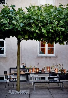 Summer nights on the terrace. Fantastic table setting with flowers and lanterns.