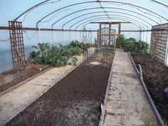 The polytunnel looking bare in Feb 2014, Yesterday I planted carrots, peas, onions and broadbeans marked by the yellow tags in the foreground.