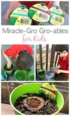 Miracle-Gro Gro-ables for Kids - the perfect spring activity! Get your kids out of the house and learning about growing their own food with these easy seed pods that are guaranteed to grow! The perfect mommy and me activity! #growablesproject #ad