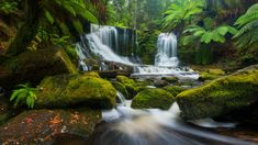 #visipixcollections Landscape Photography, Nature Photography, Travel Photography, Waterfall Wallpaper, Green Color Schemes, Great Walks, Beautiful Waterfalls, Beautiful Landscapes, Tasmania