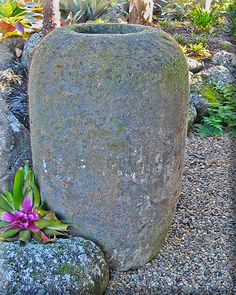 stone urn Balinese Garden, Garden Accessories, Urn, Tropical, Gardens, Sculpture, Stone, Plants, Home Decor