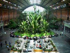 Stazione #Atocha a #Madrid #metropolitana #underground #green #architecture #indoor #garden #Spain