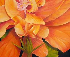 Peach Hibiscus by Sally Painter Oil ~ 16 x 20 floral canvas wall art, framed floral wall art, flower artwork images, floral wall art pictures, flower wall art decor, beautiful flower paintings, flower paintings on canvas, flower paintings oil, floral paintings, paintings of flowers, flower painting images, botanical wall art, bold botanical oil painting
