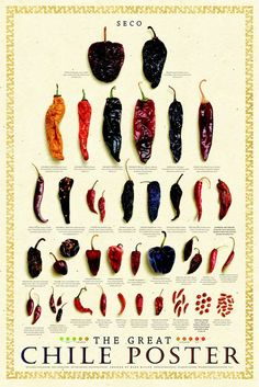 Great Chile Poster (dried) by Mark Miller Art Print Poster: Quality Art Print Direct From Publisher Cooking Tips, Cooking Recipes, Coconut Oil Weight Loss, Dried Peppers, Dried Chillies, Olive Oil Cake, Good Food, Yummy Food, Guacamole Recipe