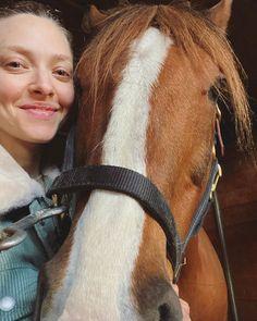 "Amanda Seyfried💛 na Instagramie: ""HERM"" Amanda Seyfried, Horses, Animals, Instagram, Animales, Animaux, Horse, Animal, Animais"