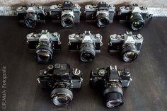 A part of my old Minolta SLRs. Retro Camera, Film Camera, Cameras, Photography, Collection, Photograph, Camera, Fotografie, Photoshoot