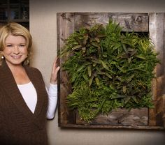 The BrightGreen vertical wall planter is not just reserved for outdoor spaces. When used indoors, they provide the benefits of improved air quality and an increase in your overall health and mental well being. It is a very green way to improve the way you live. http://brightgreenusa.com