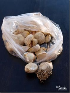 Photo about Garlic cloves in a plastic bag on black wooden table. Image of close, black, aroma - 51295616 My Recipes, Favorite Recipes, Romanian Food, Garlic Sauce, Tzatziki, Carne, Good Food, Dinner, Vegetables