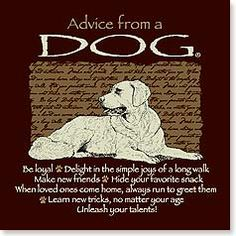 Magnet - Staff Pick - Advice from a Dog | Your True Nature® | 26341 | Leanin' Tree