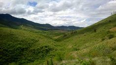 lo verde de los montes
