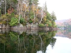 Title  White Birch Reflections  Artist  Jean Macaluso  Medium  Photograph - Photography