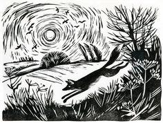 Animalarium: Foxes Den