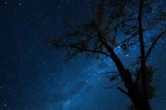 Milky Way - reminds me of the Texas Hill Country and my childhood Colorful Pictures, Pretty Pictures, Cool Photos, Life Is Beautiful, Beautiful Images, Sky Full Of Stars, Sky Art, Pictures Of People, Milky Way