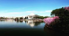 Washington Travel Tips  Monuments and memorials, eclectic neighborhoods, true local flavor – Washington is a place unlike any other. It's your home away from home with free museums and America's front yard. Plan your trip to the nation's capital by checking out all the things to do, places to eat and ways to stay. It's amazing destination for travel.
