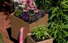 Cardboard gardening!  Recycling and good for your garden.  Read this in Birds and Blooms at the doctors office.