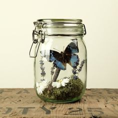 This ode to meadow flowers and spring.   27 Soothing Terrariums To Bring Tranquility To Your Home