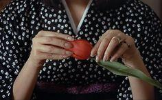 Hiroko Matsumoto, Domicile Conjugal, François Truffaut (1970)