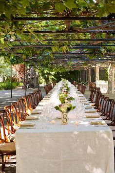Create an outdoor canopy with pipe and plants, how cool would that be with grape vines!