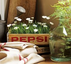 10 IDEAS FOR DECORATING WITH VINTAGE SODA CRATES