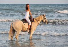Horseback Riding in Puerto Plata | Inside Puerto Plata
