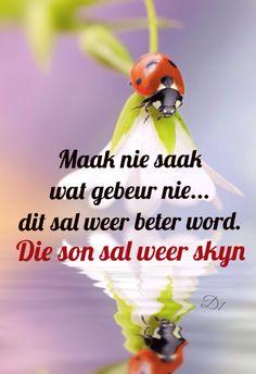 Maak nie saak wat gebeur nie... dit sal weer beter word. Die son sal weer skyn Mama Quotes, Wisdom Quotes, Afrikaanse Quotes, Inspirational Qoutes, True Words, Things To Think About, Ladybugs, Motivation, Sayings
